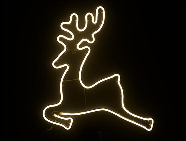 Deer fly 3